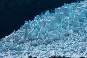 Experience the dramatic Fox Glacier