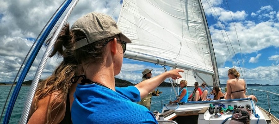 Sailing Options in New Zealand