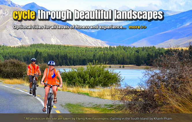 new zealand cycling tours